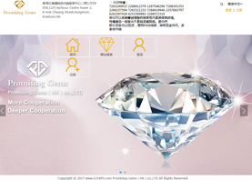 promising gems(hk)co.,ltd